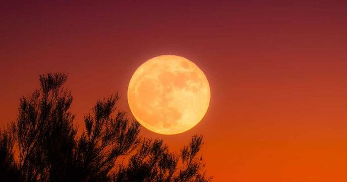The Moon/La Lune. - Page 11 F36e622043